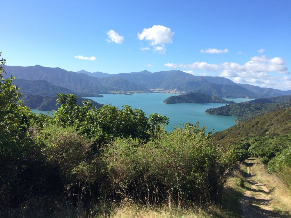 Marlborough sound - gateway to marlborough wine region