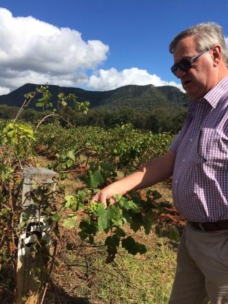 Richard Everett Wine Country Tours