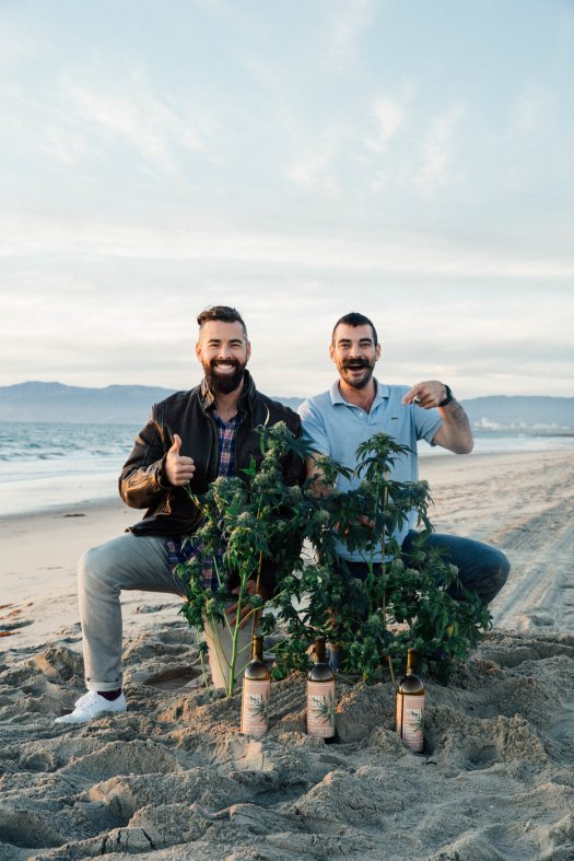 alex_chip_beach_plant_wine-1