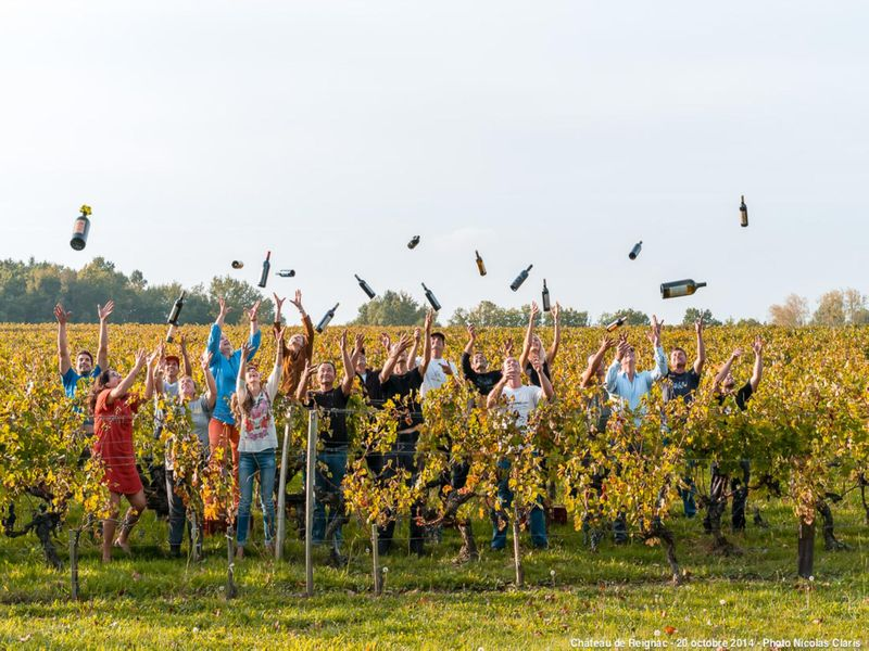 End of harvest wine bottle toss at Chateau Reignac