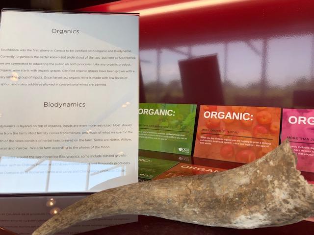 organics biodynamics Southbrook