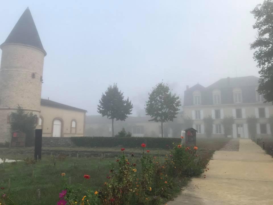 Mist Guiraud - ideal wine