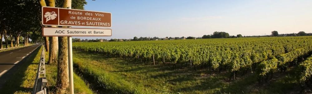 Sauternes Tourisme sud Gironde