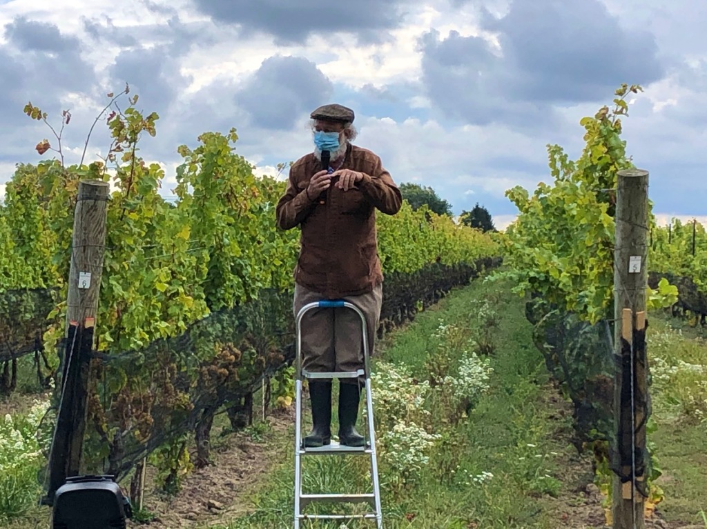 gentleman standing on a short ladder in a vineyard speaking to guests