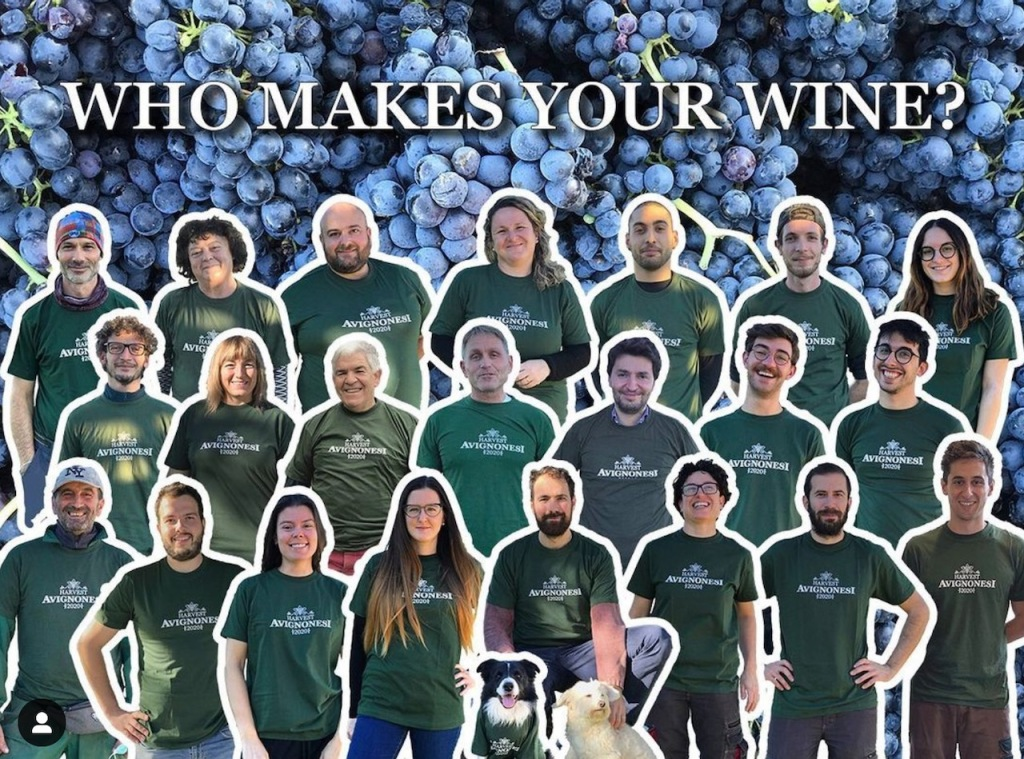 photo of harvest team that works at winery all wearing same green tshirts