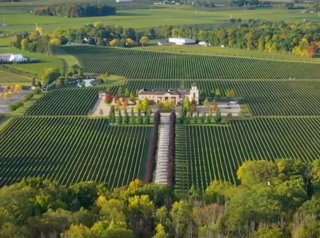 Aerial view of vineyard and winery in distance in Niagara